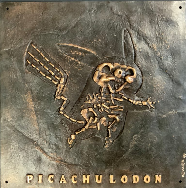 Picachulodon